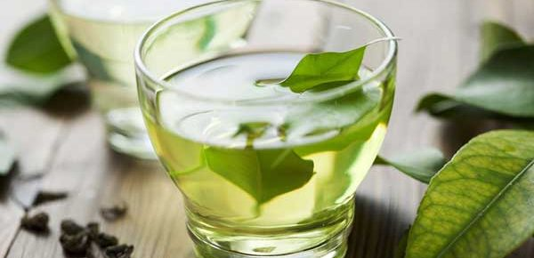 Green Tea and leaky Gut
