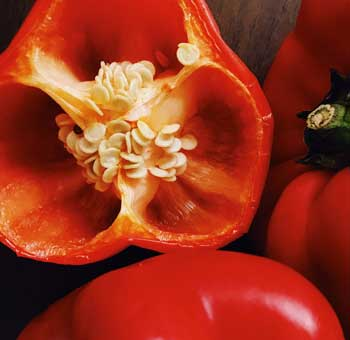 Nightshades bell peppers